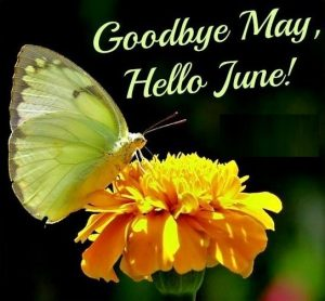 Goodbye-May-Hello-June-Images-Quotes-For-Saying-300x278
